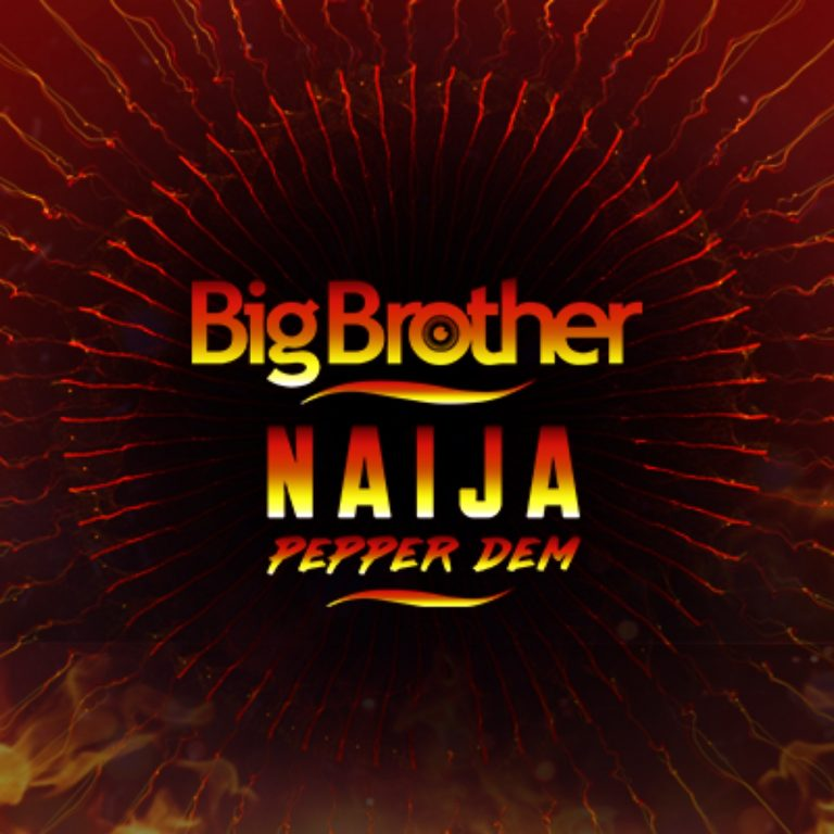 Big Brother Naija 2019: How To Vote
