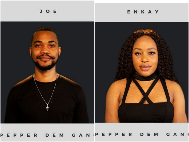 Big Brother Naija 2019: Another new housemates, Joe and Enkay enter the house