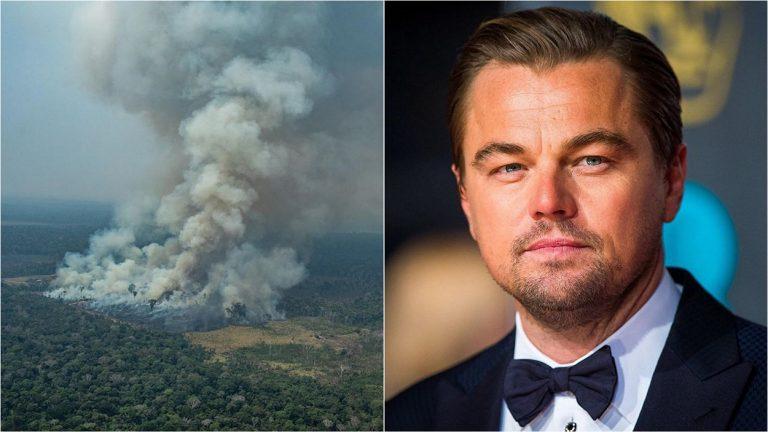 Leonardo DiCaprio donates $5 million to help end Amazon rainforest fire
