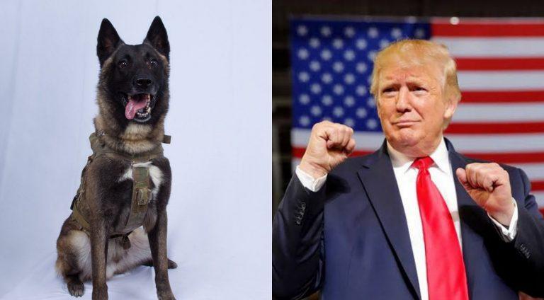 President Donald Trump reveals dog who helps in capturing and killing ISIS leader, Abu Bakr al-Baghdadi