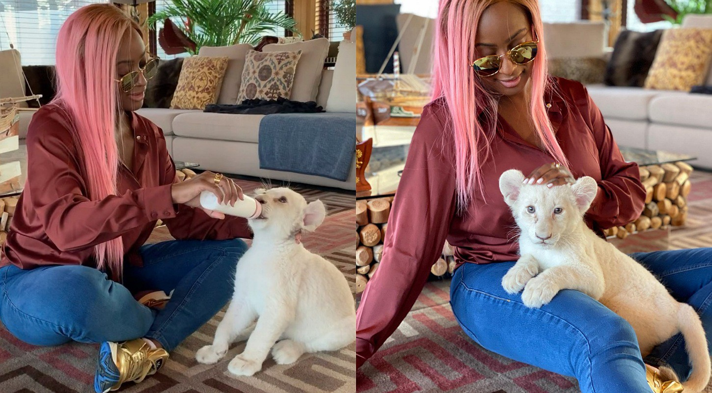 """Otedola's daughter, Dj Cuppy buys baby lion pet she names """"Cuppy"""""""