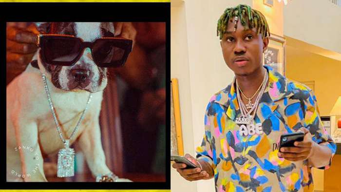 Zlatan signs dog, Astalavi into his Zanku Records, says he couldn't find real human being to sign