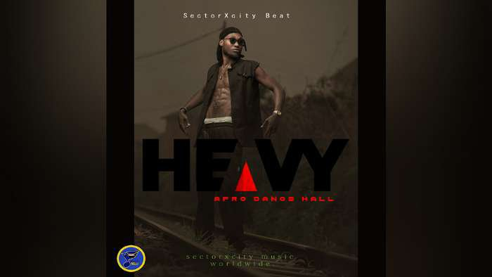 Download Freebeat – Heavy Afro Dance Hall Instrumental (Prod. By Sectorxcitybeat)