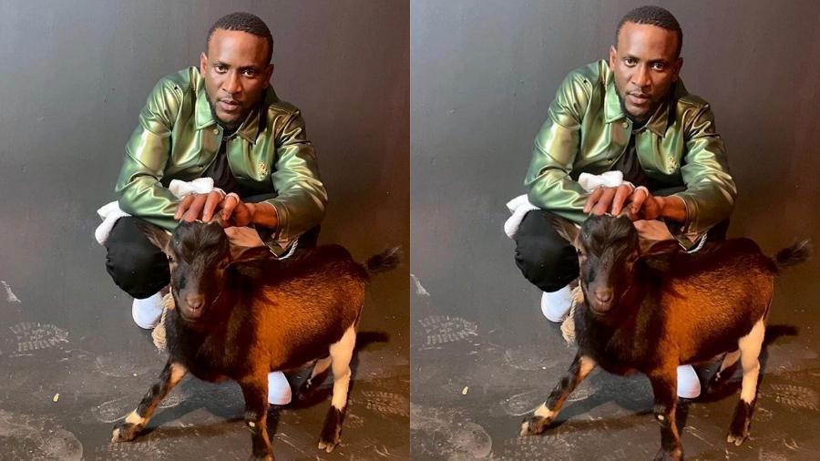 Fans react as BBNaija Omashola storms internet with his favorite pet, a goat