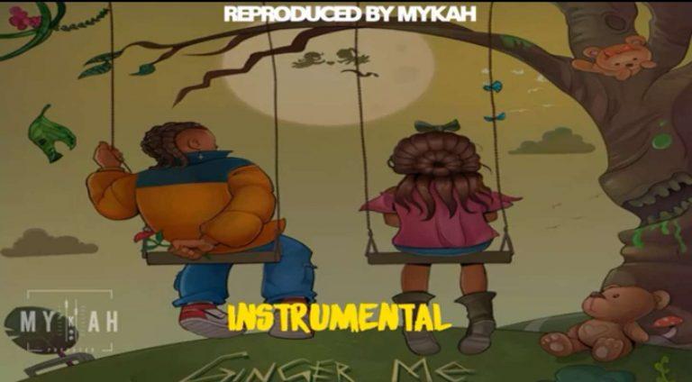Download Instrumental REMA – Ginger Me (Reprod. By Mykah)